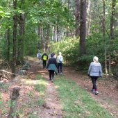 people hiking on a wooded trail