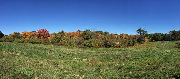 Coburn Meadows