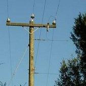 move utility poles