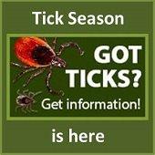 tick season