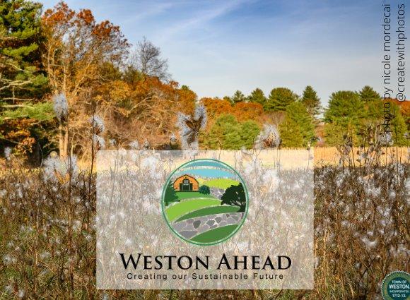 weston ahead logo over field of milkweed