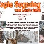 maple sugaring program 18 small