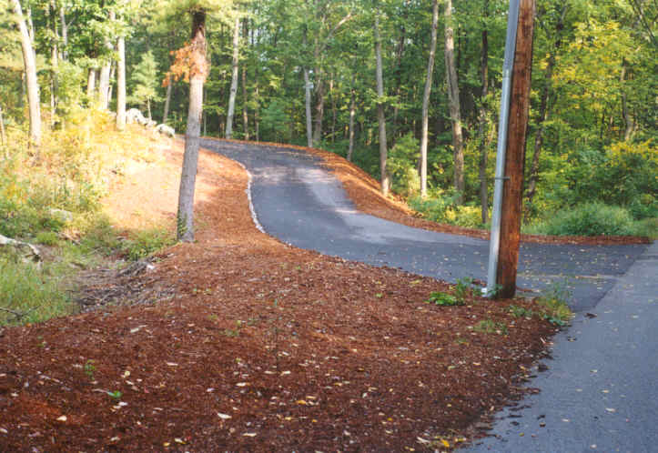 Mulch Surrounding Drive