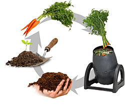 How-Composting-Works.jpg