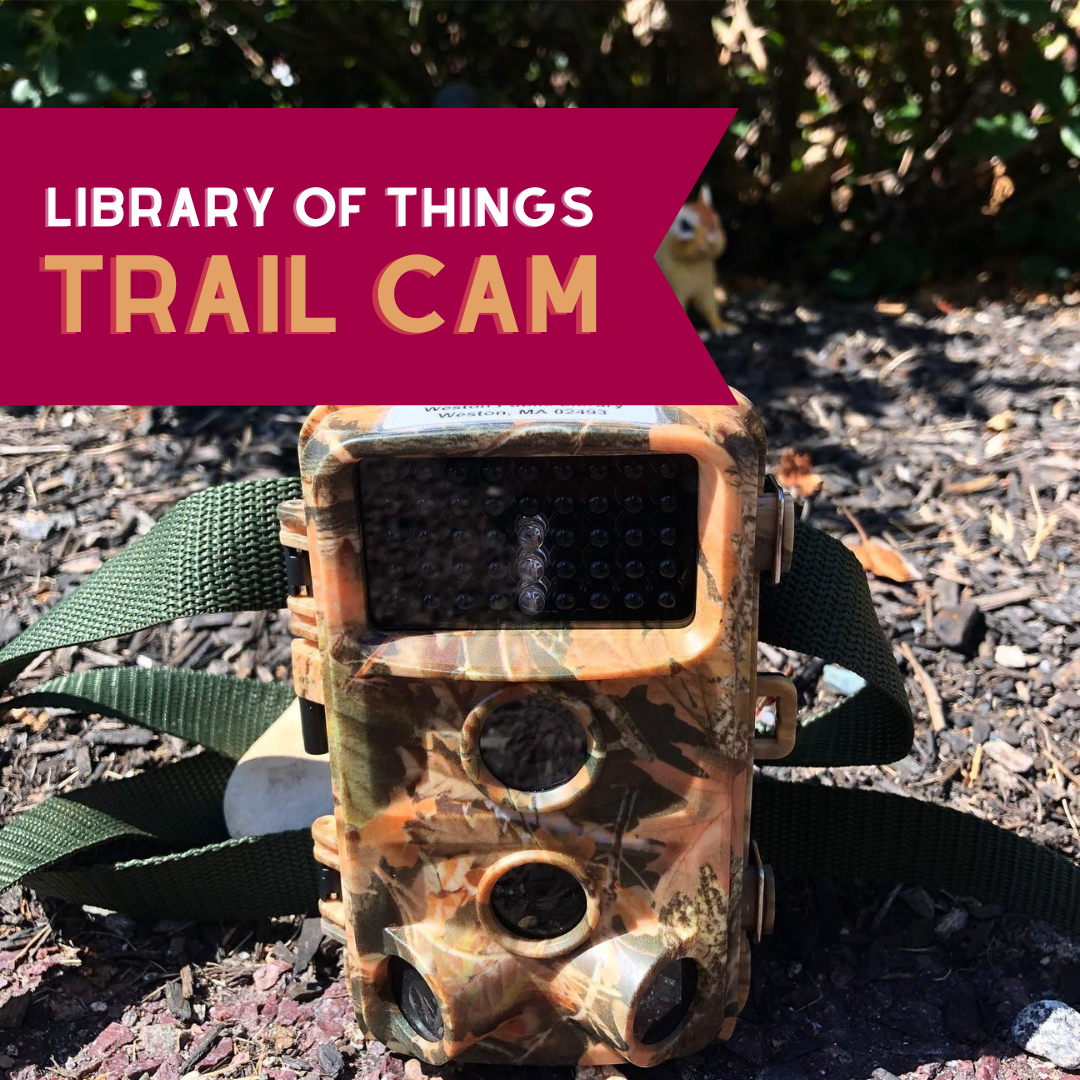 Library of things trail camera